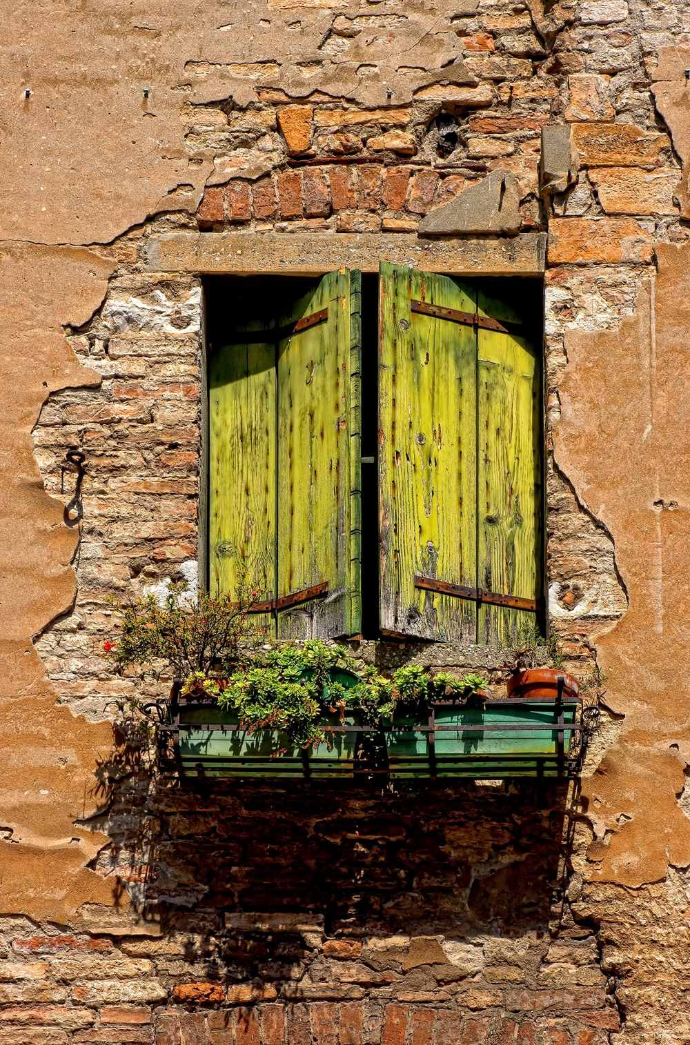 green wooden window