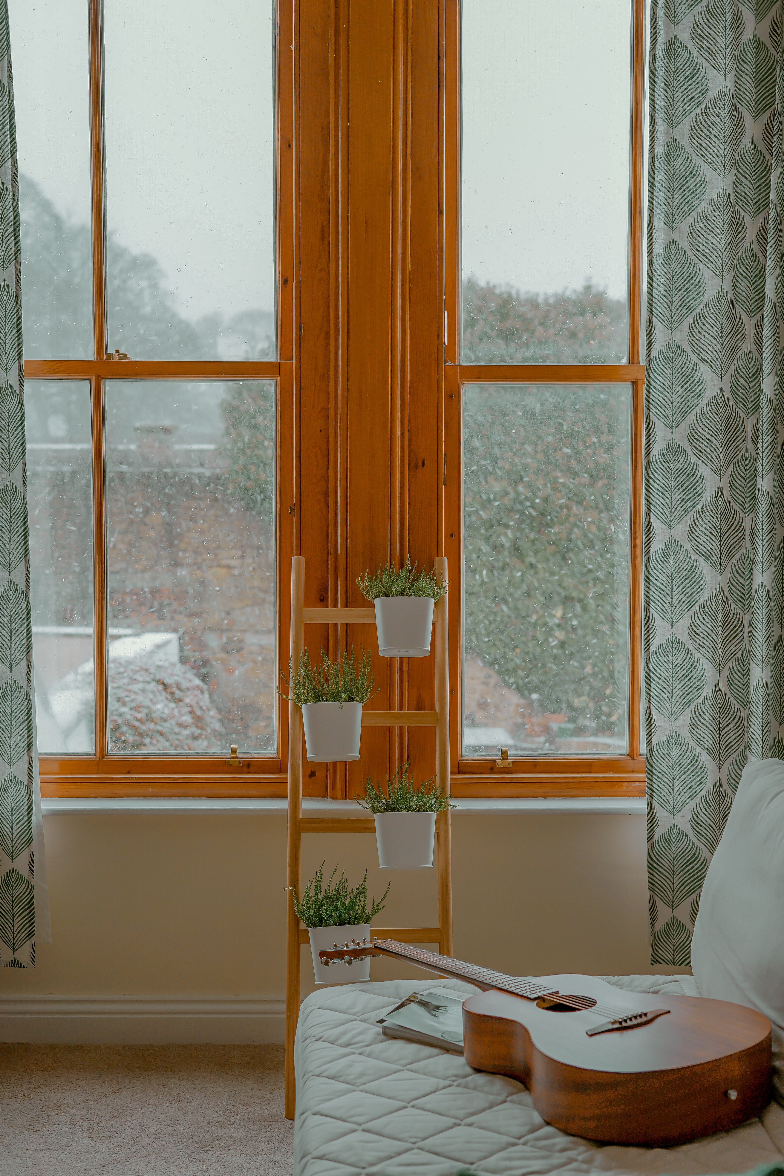 four green leaf plants with pot on rack near window
