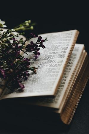 Uppslagen Bibel och blommor