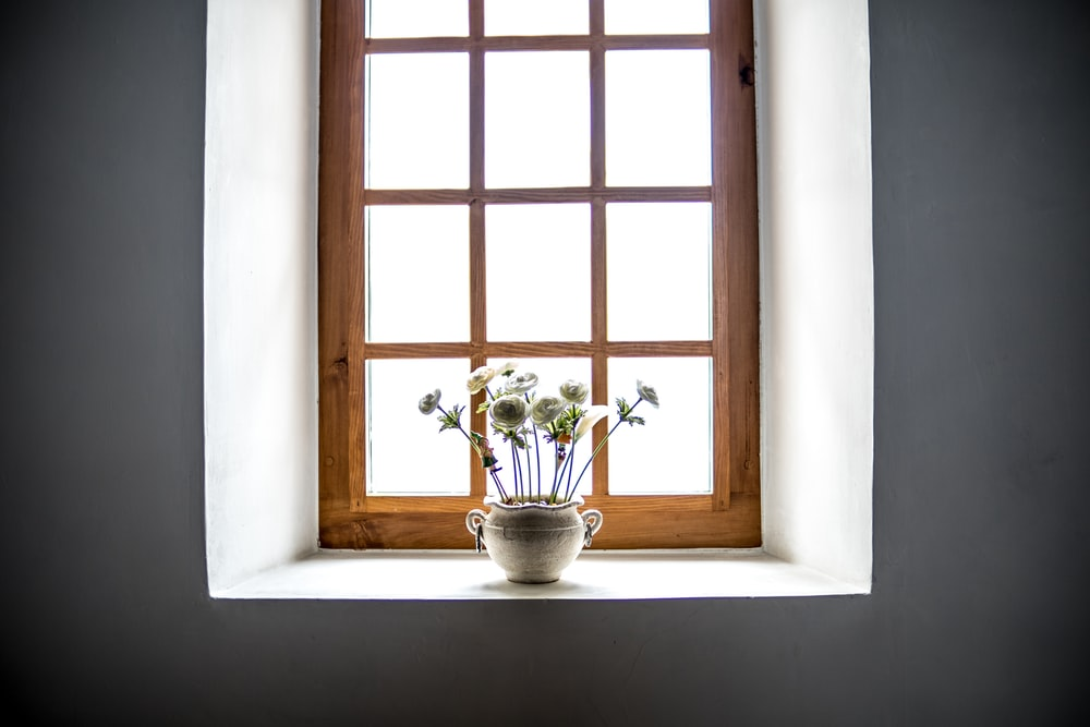 white ceramic vase with white flowers in window at daytime