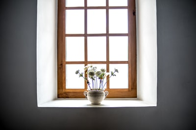 white ceramic vase with white flowers in window at daytime window zoom background
