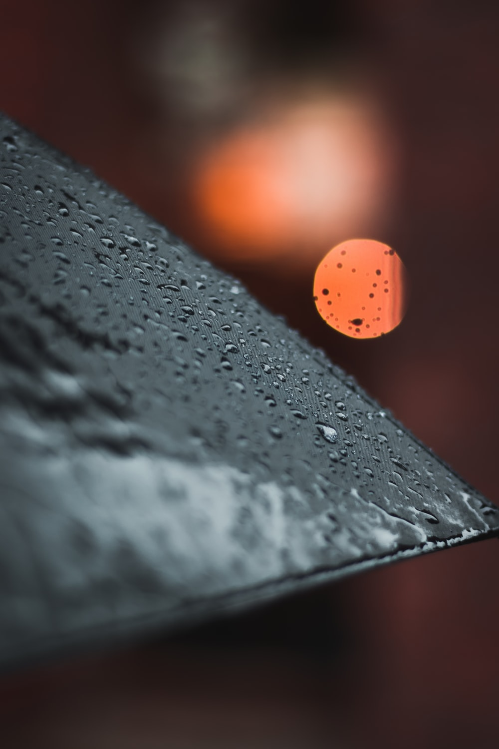black umbrella with water droplets