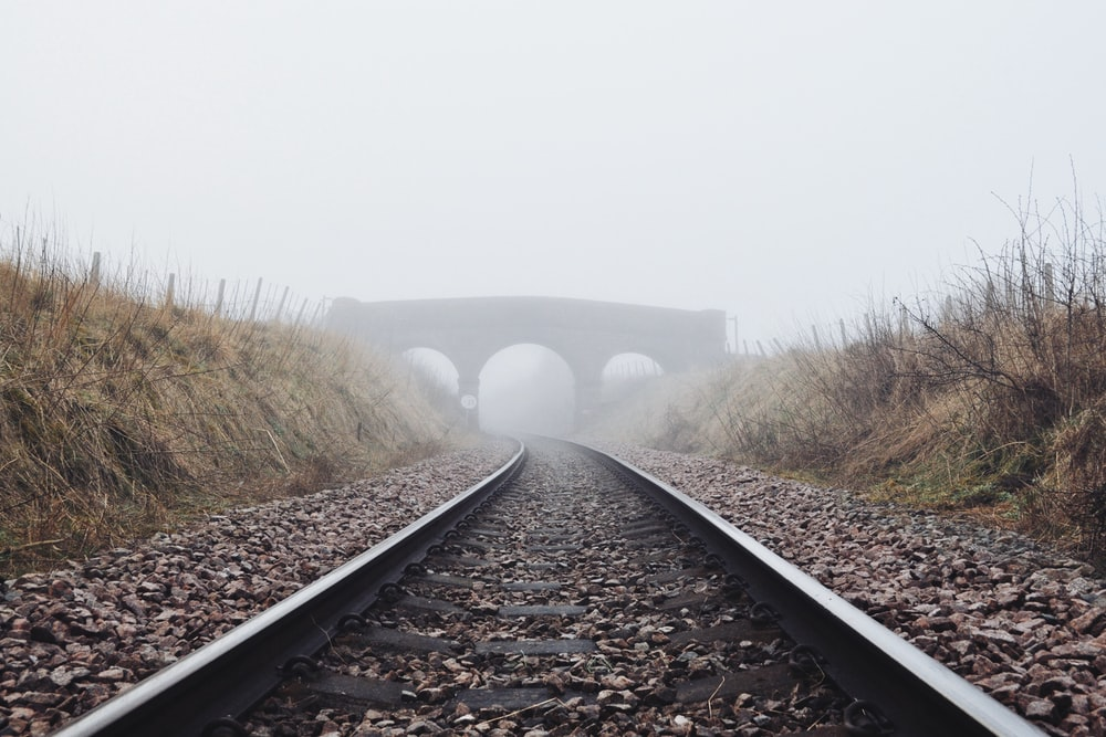 railway between grasses during daytime