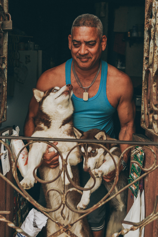 man holding two husky near window inside house
