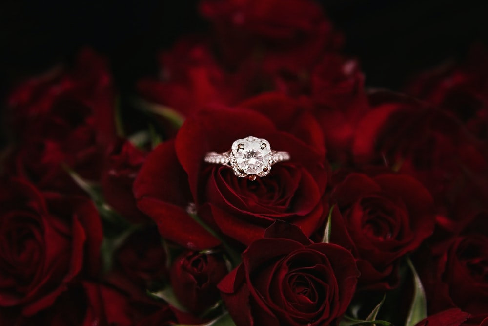 silver-colored ring on top of red roses