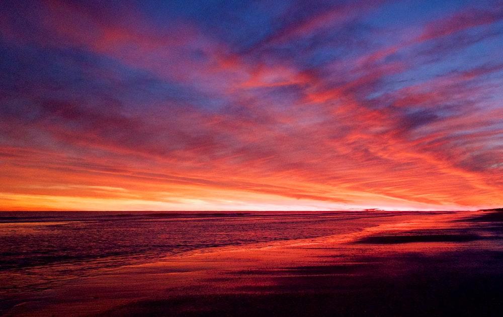 photography of orange sky