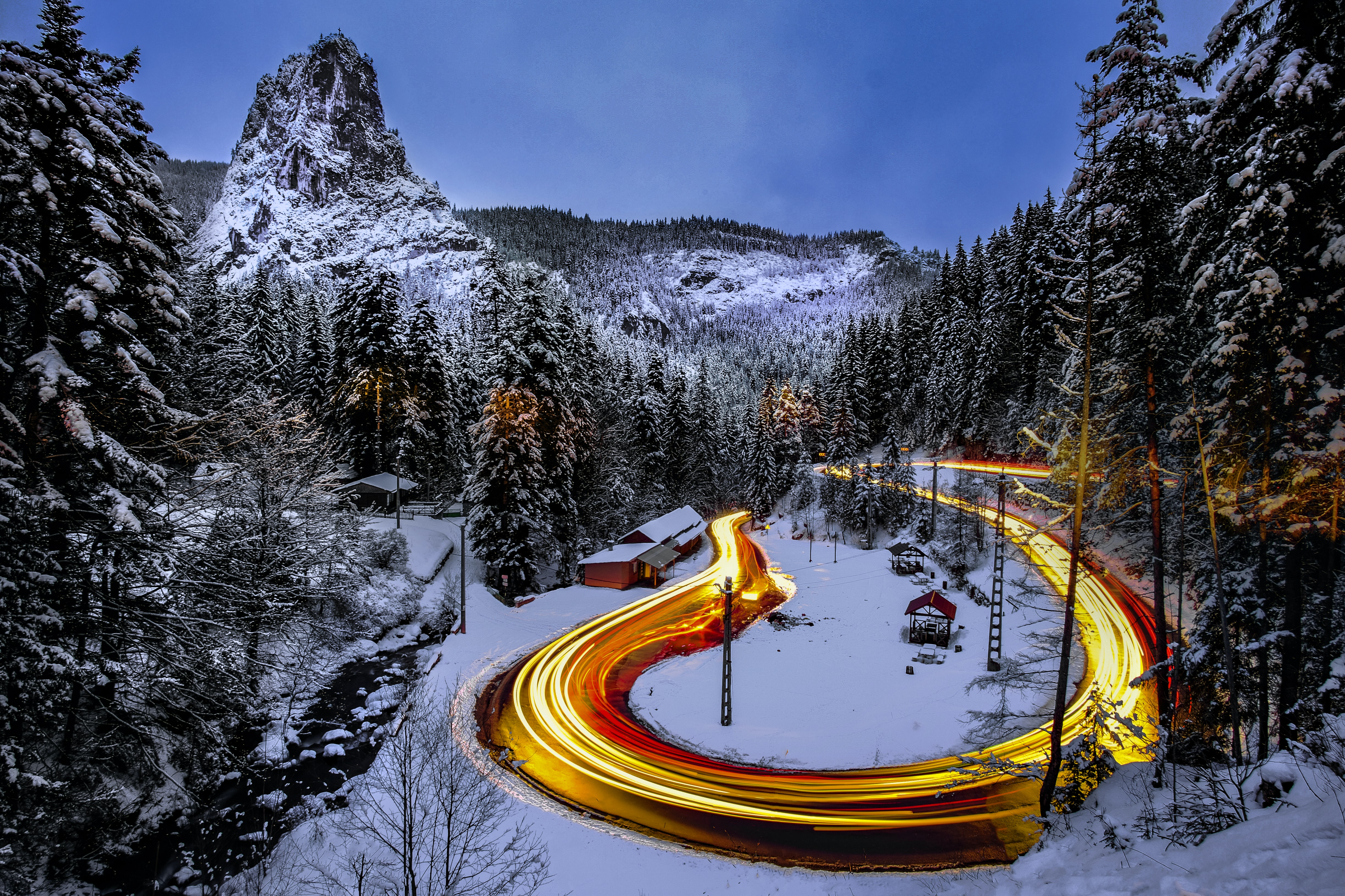 time-lapse photography of road surrounded by pine trees coated with snow
