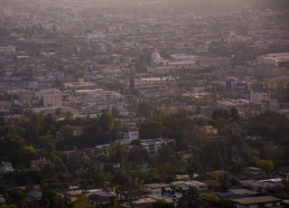 aerial photography of buildings and trees