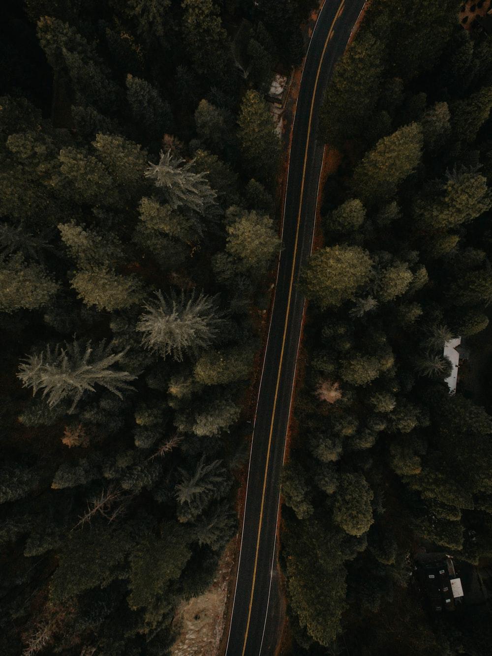 bird's-eye view shot of highway road