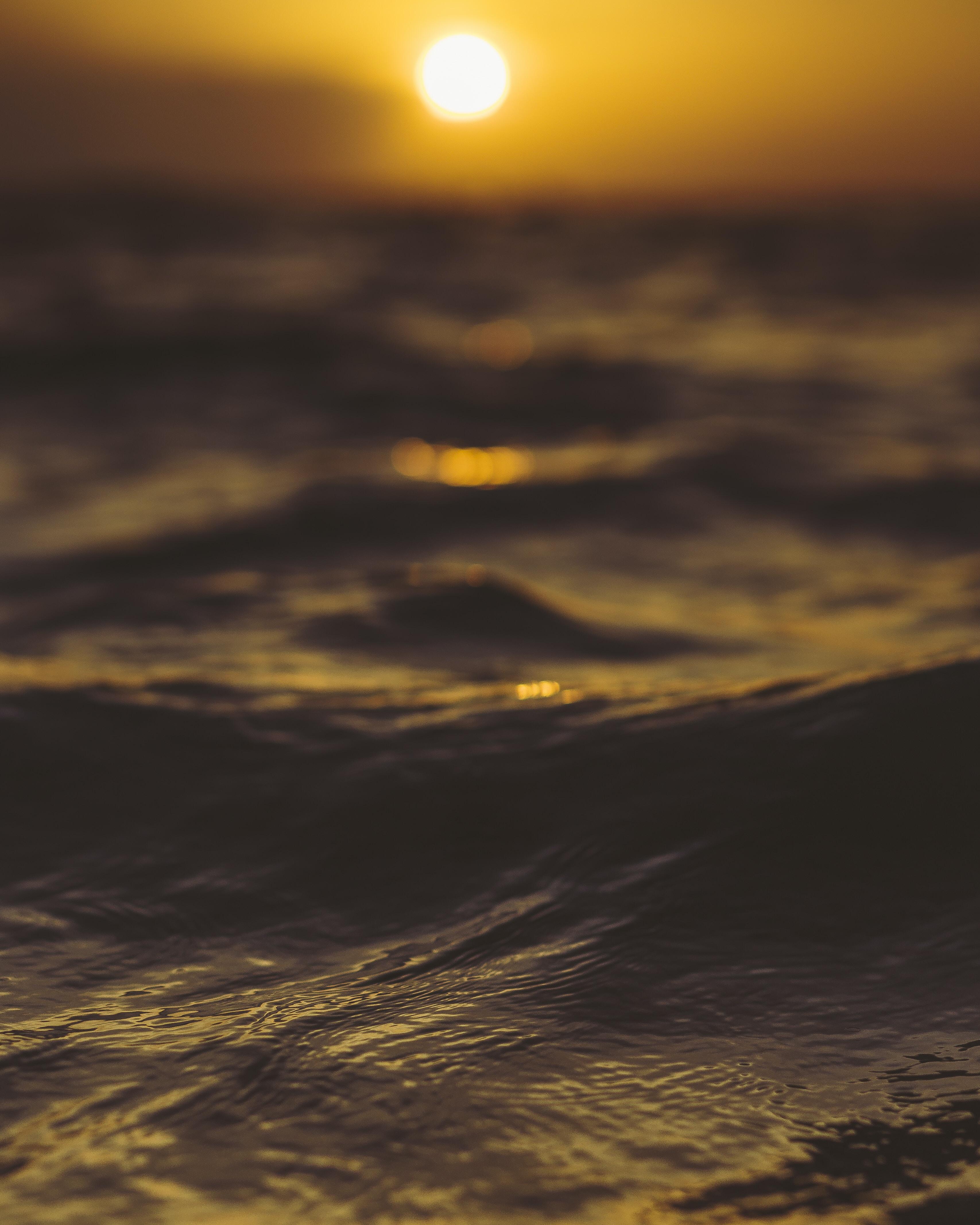 macro photography of body of water