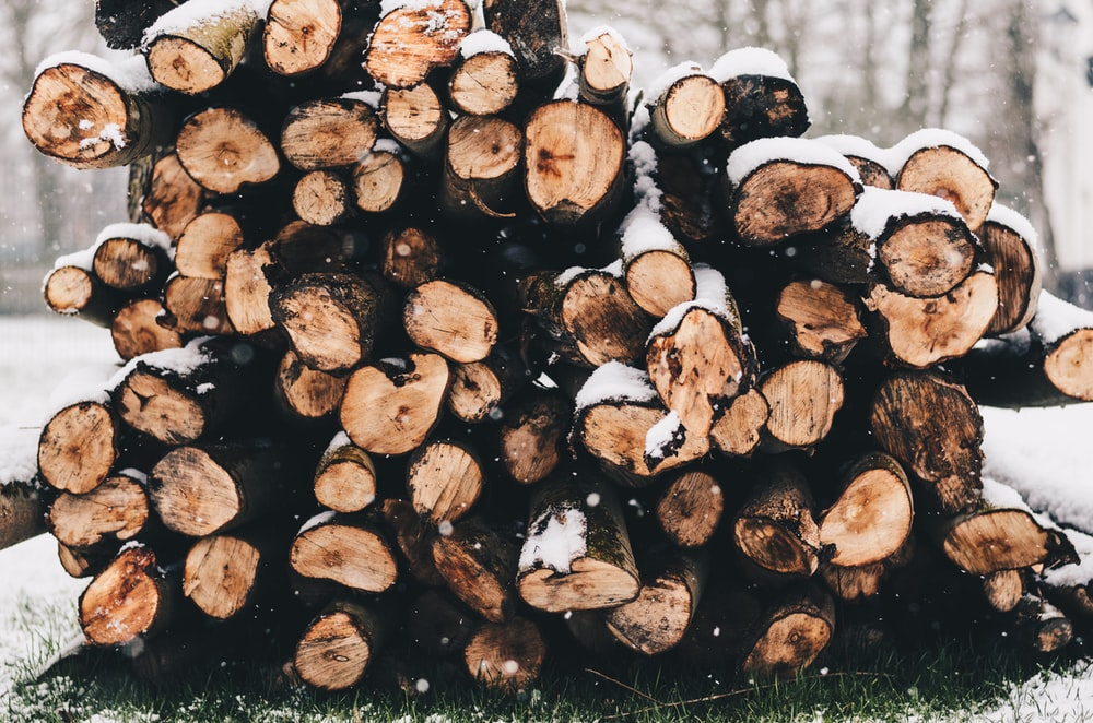 selective focus photography of firewood on snow covered grass