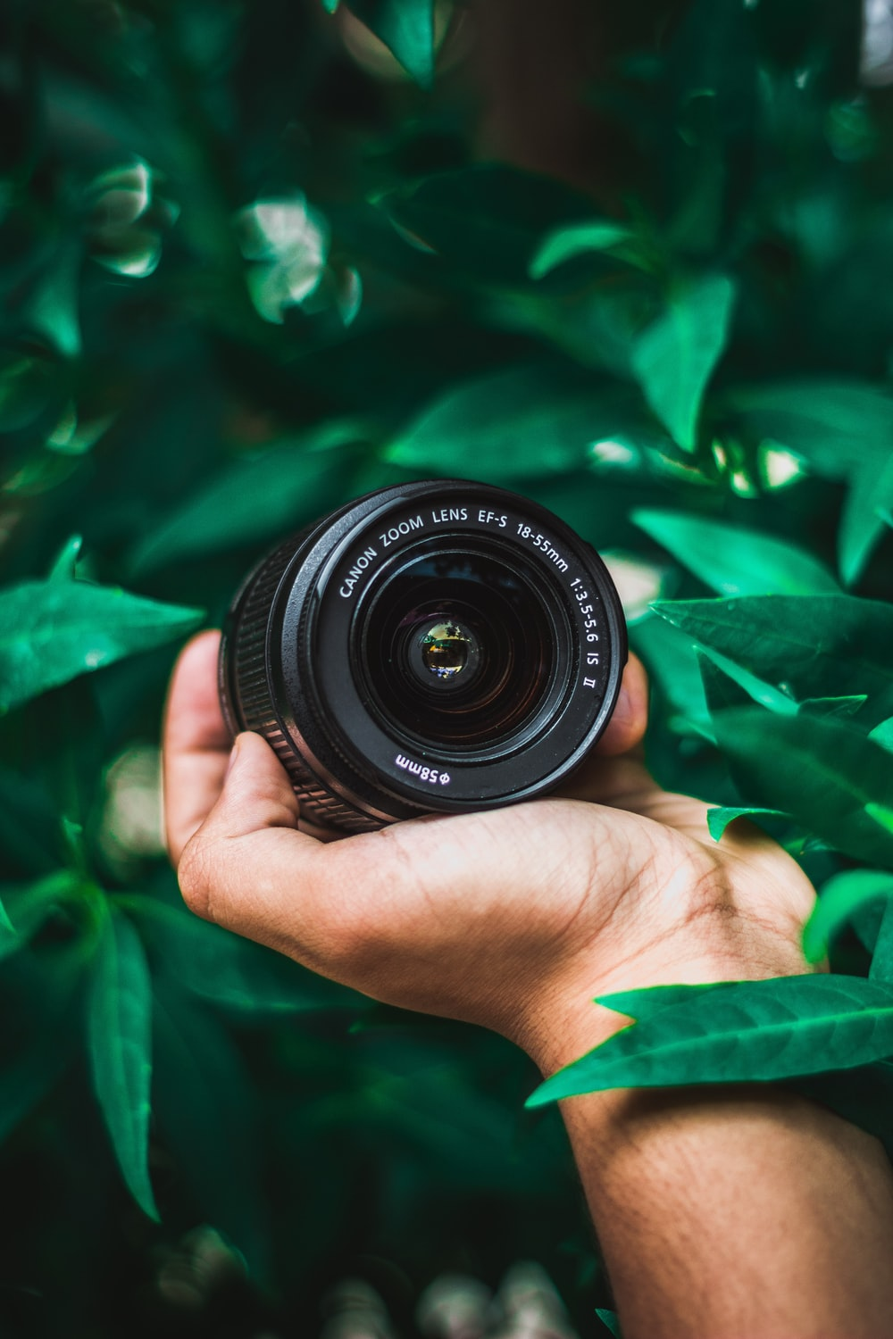 selective focus photography of person holding Canon telephoto lens