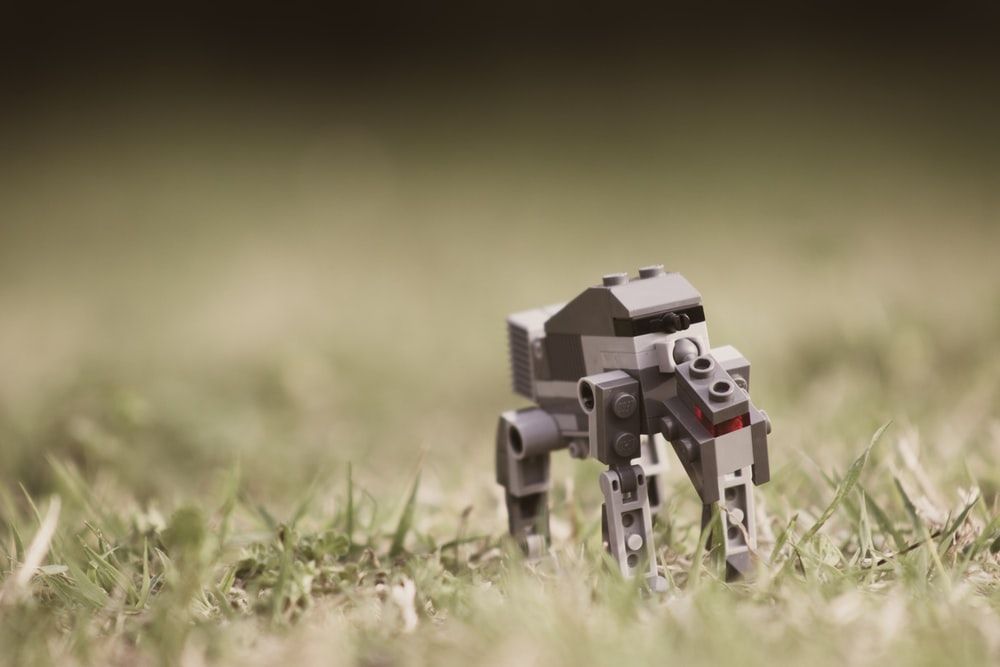 tilt photography of gray robot on green grass at daytime