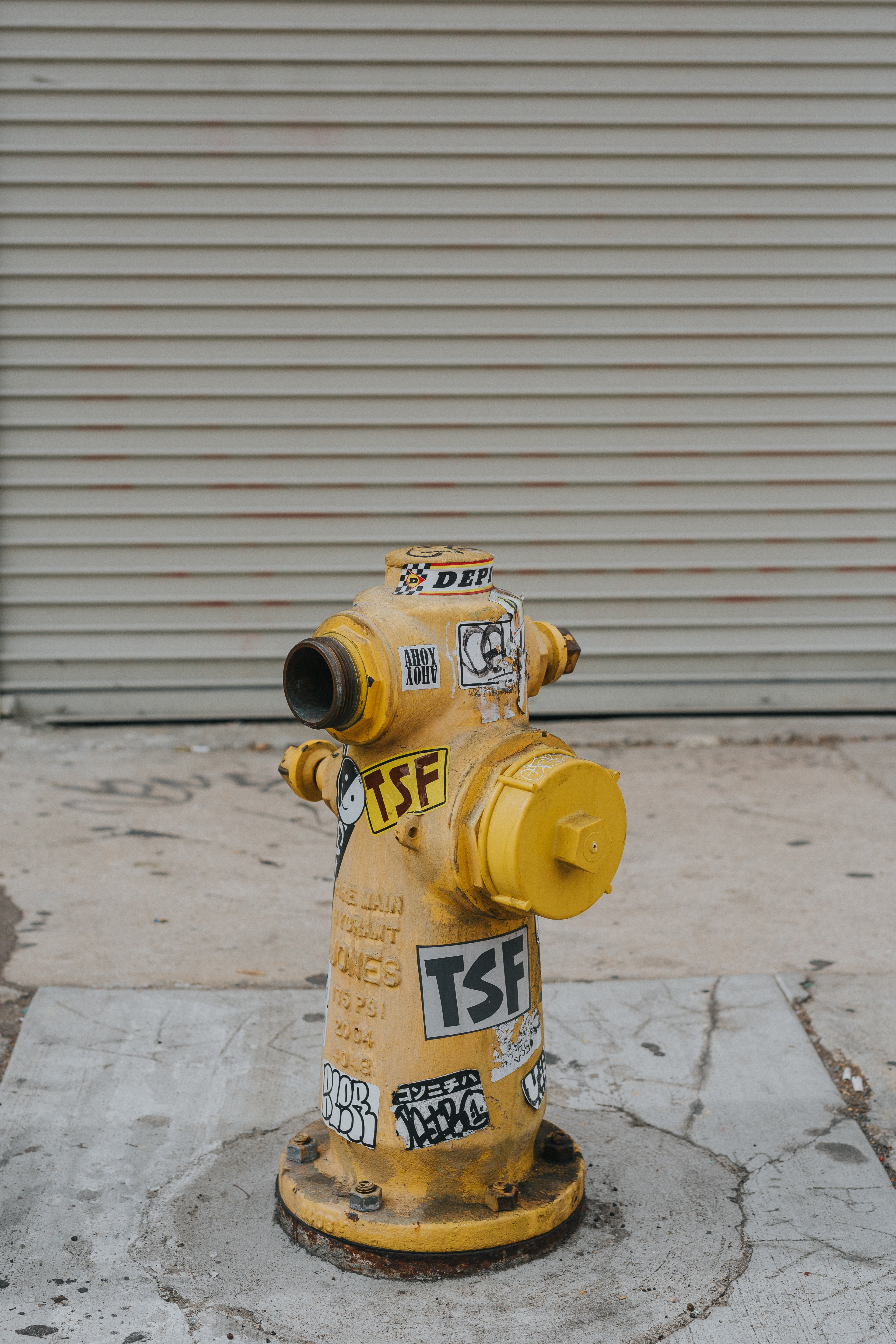 yellow and white fire hydrant