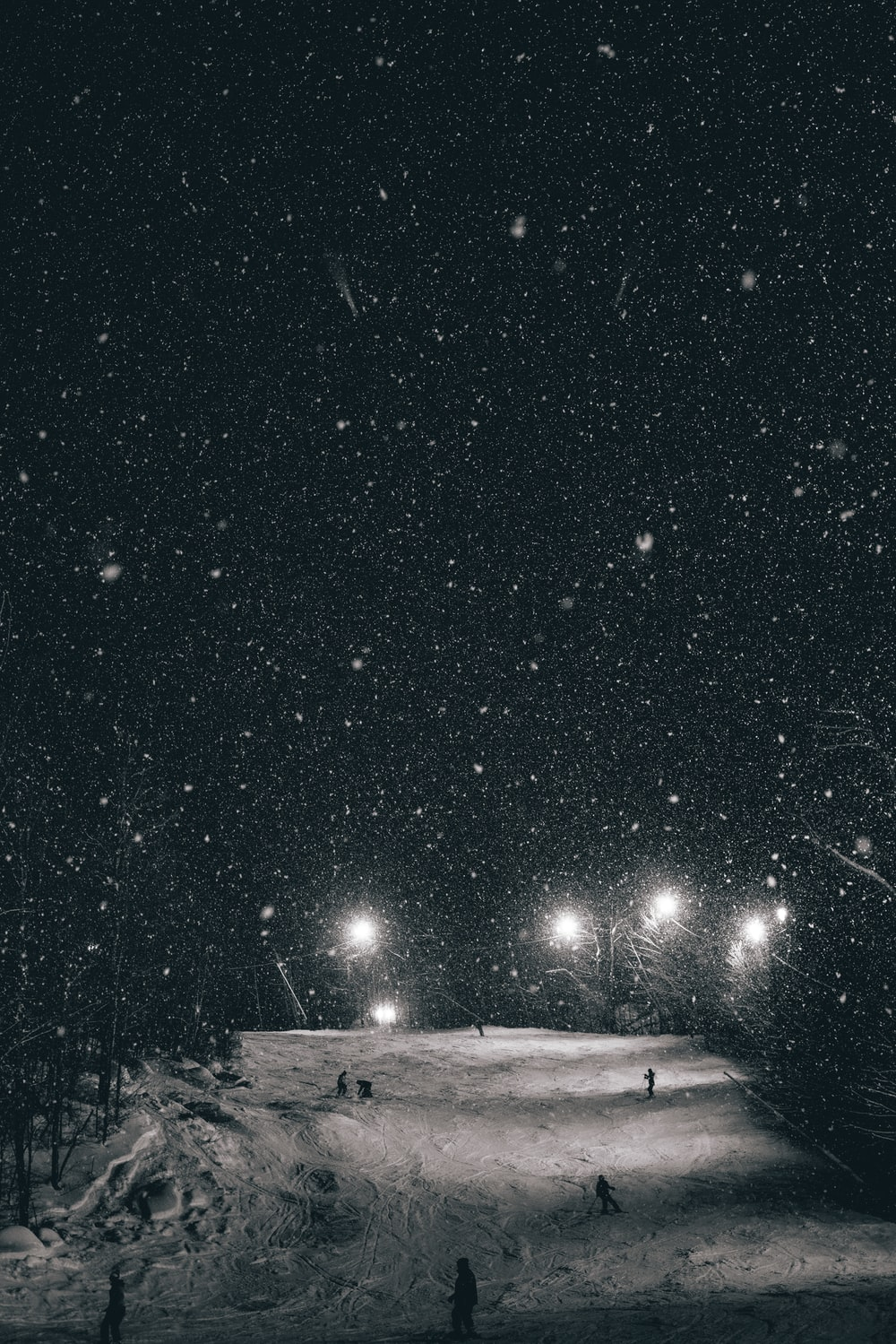 starry sky over tundra and lights