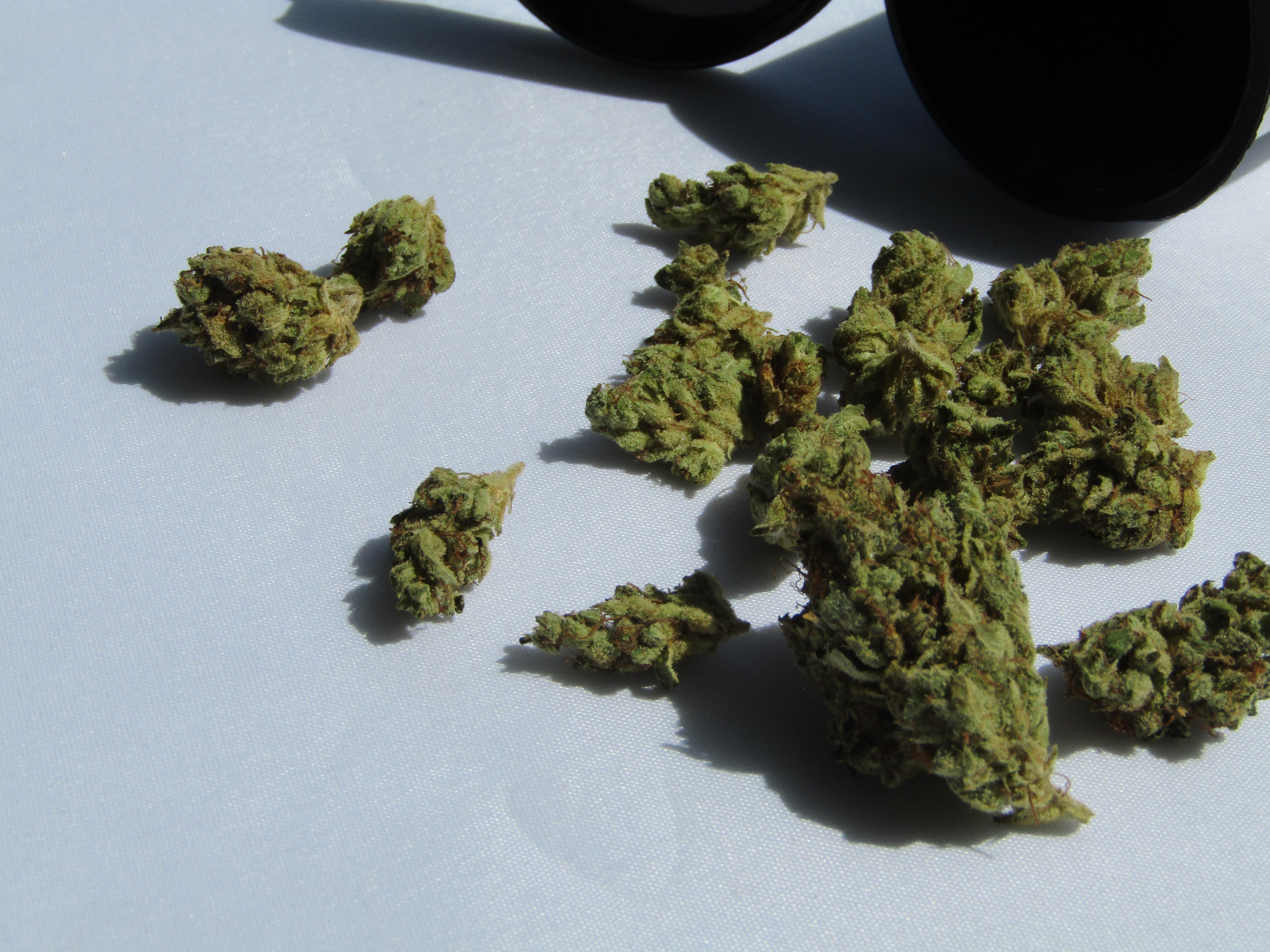 marijuana soil
