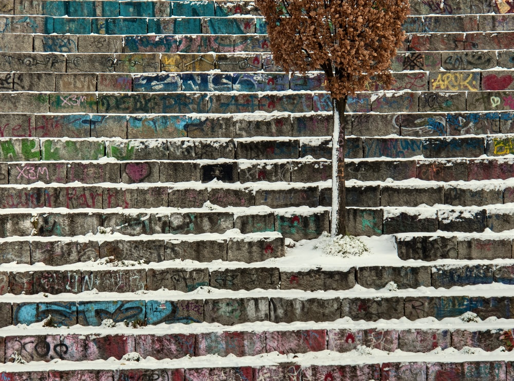 snow covered stairs and tree