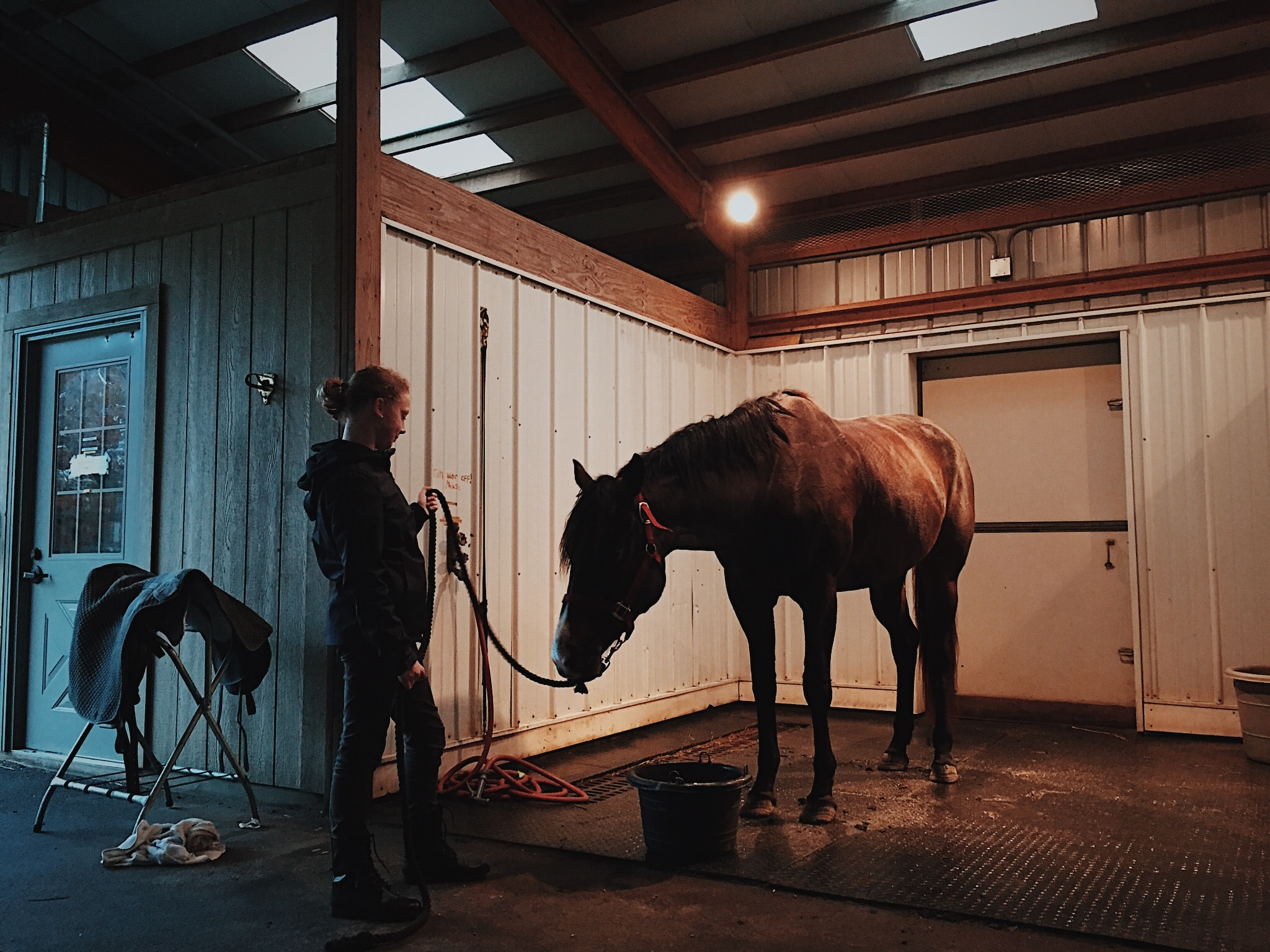 man standing in front of horse