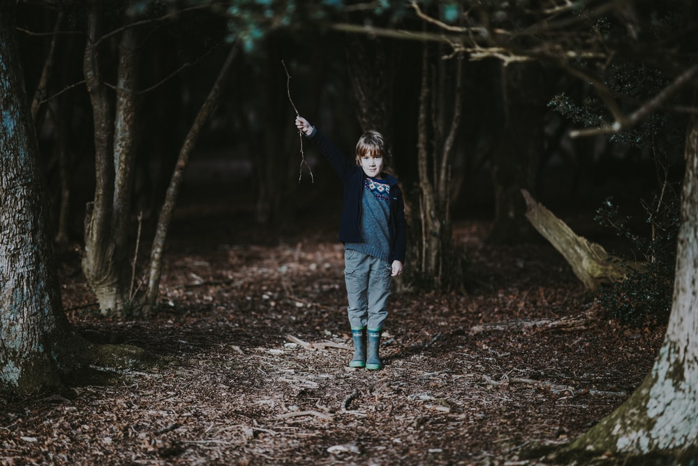 boy holding tree branch inside the forest