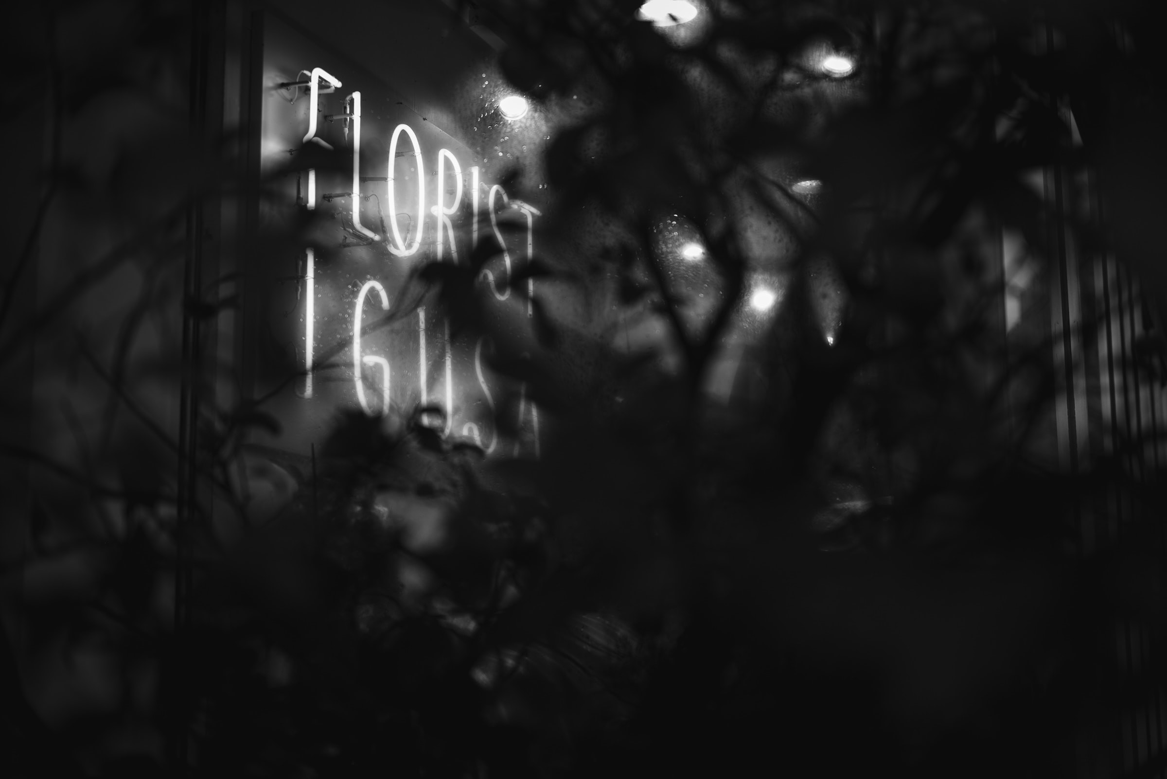 grayscale photo of lighted florist neon light signage