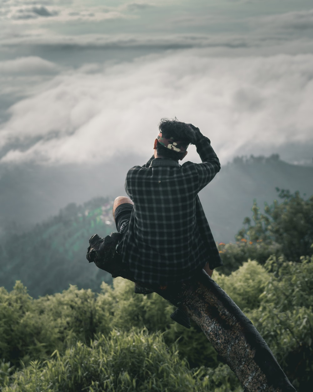 man sitting on tree branch near mountain under white sky