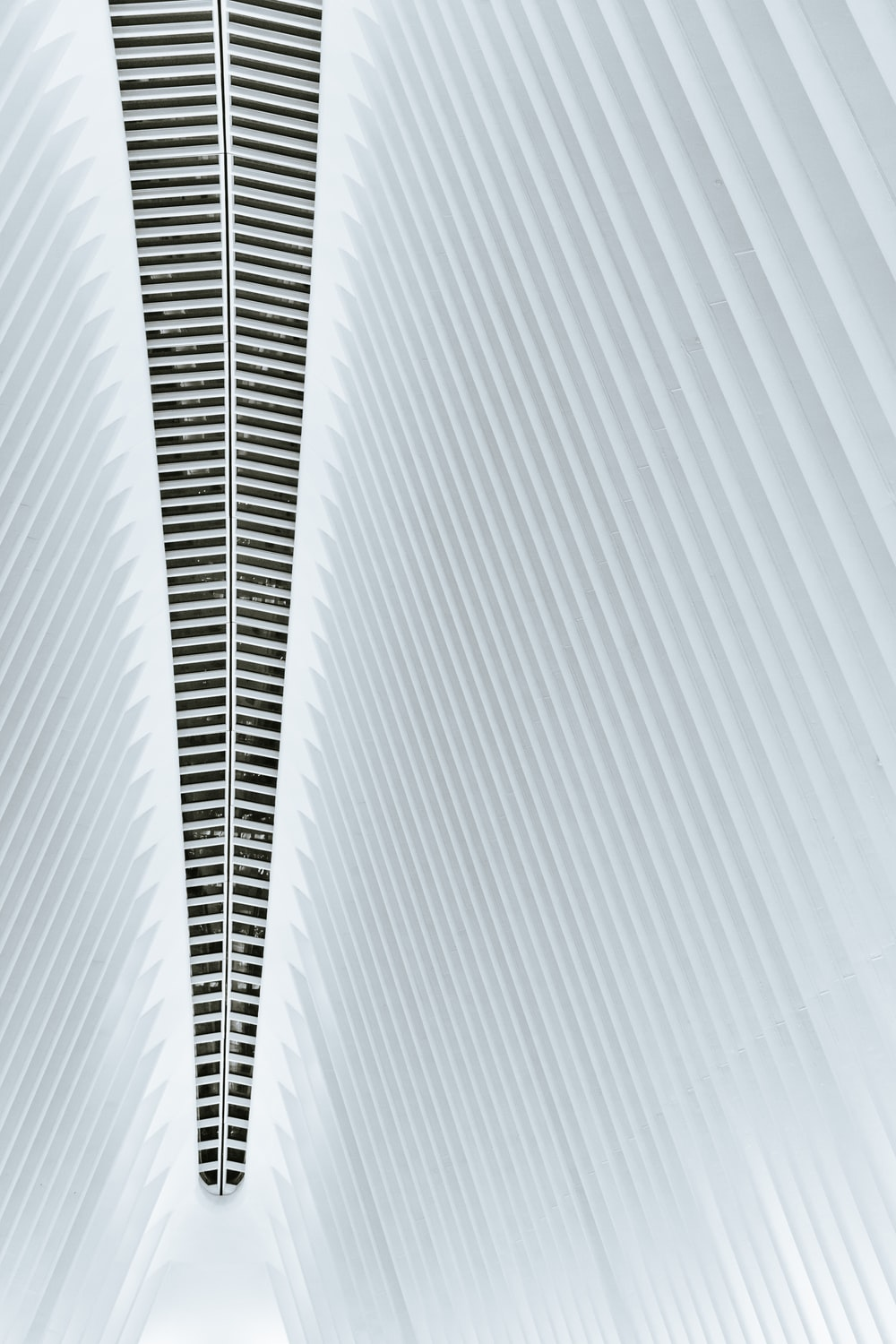minimalist photography of building ceiling