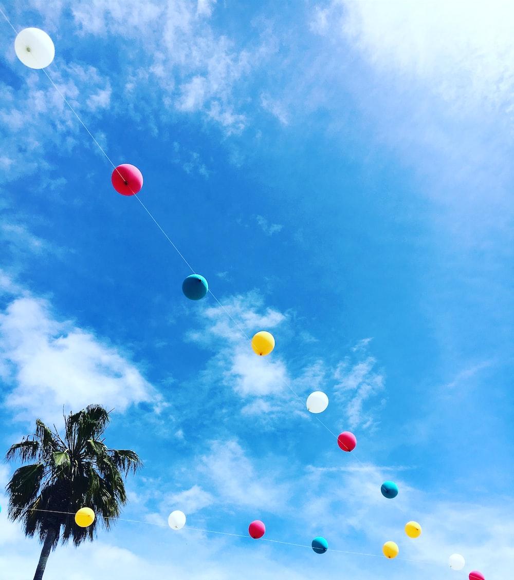 multicolored balloon string hanged near tree