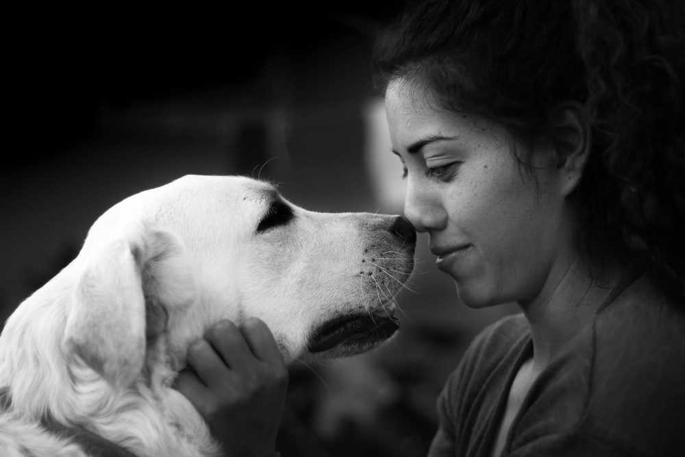 woman kissing the dog
