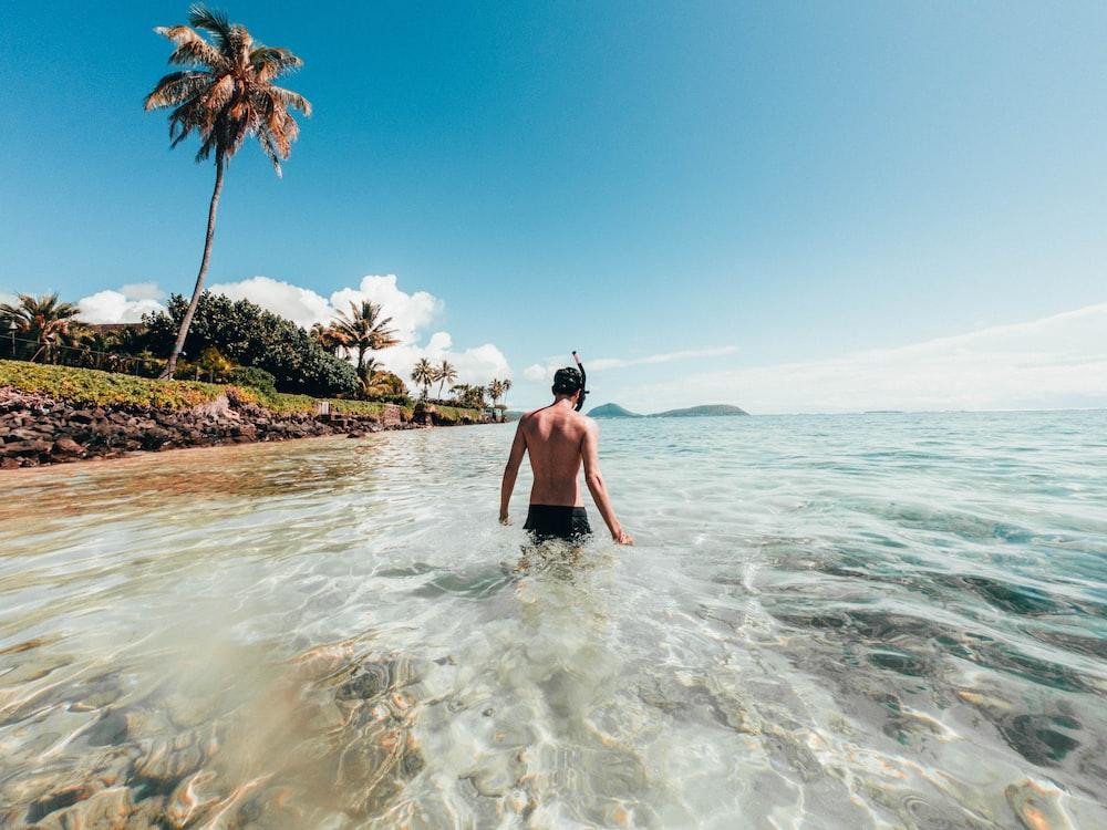 man walking on the shore near green coconut tree