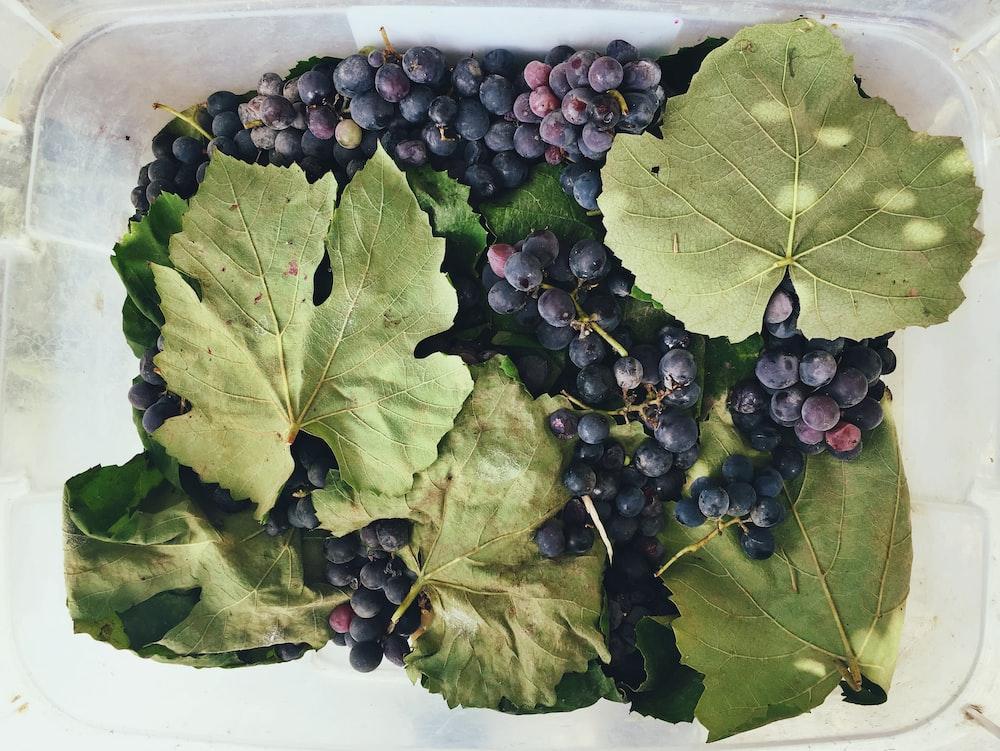 box of grapes