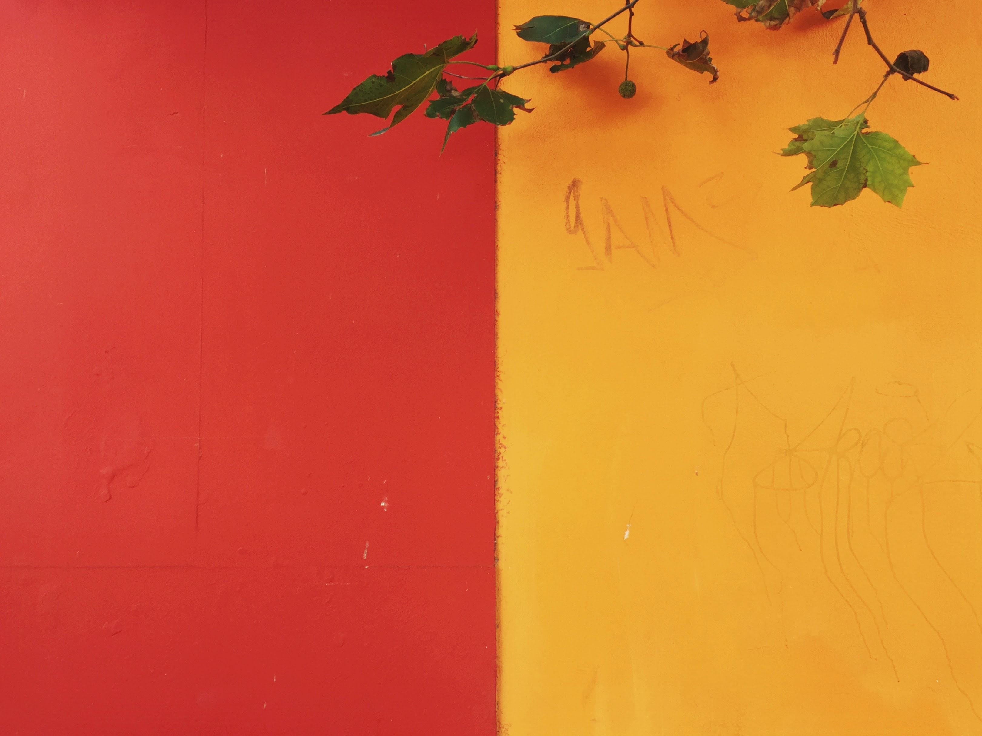 yellow and red painted wall