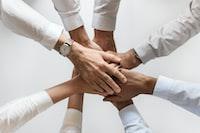 people holding hands together