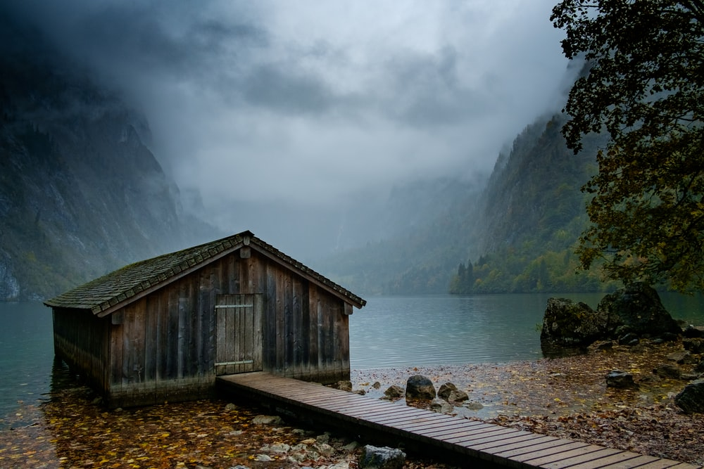 brown shed beside body of water