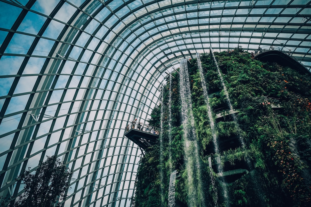 Inside the Cloud Forest Dome Gardens by the Bay in Singapore