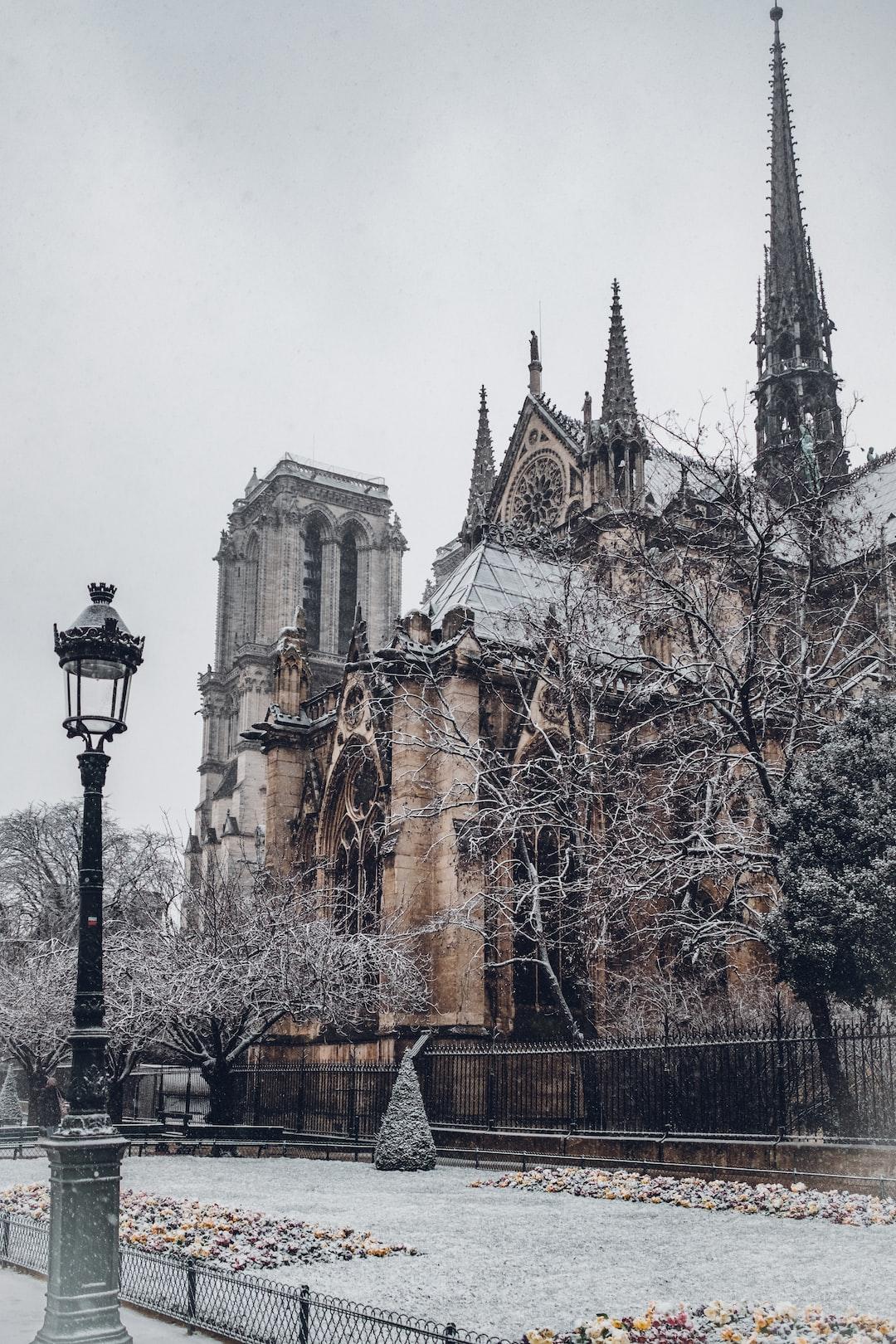 Snow in Notre Dame garden
