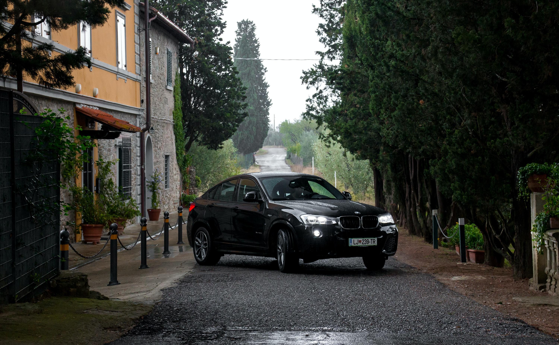 black sedan parking on road near green trees