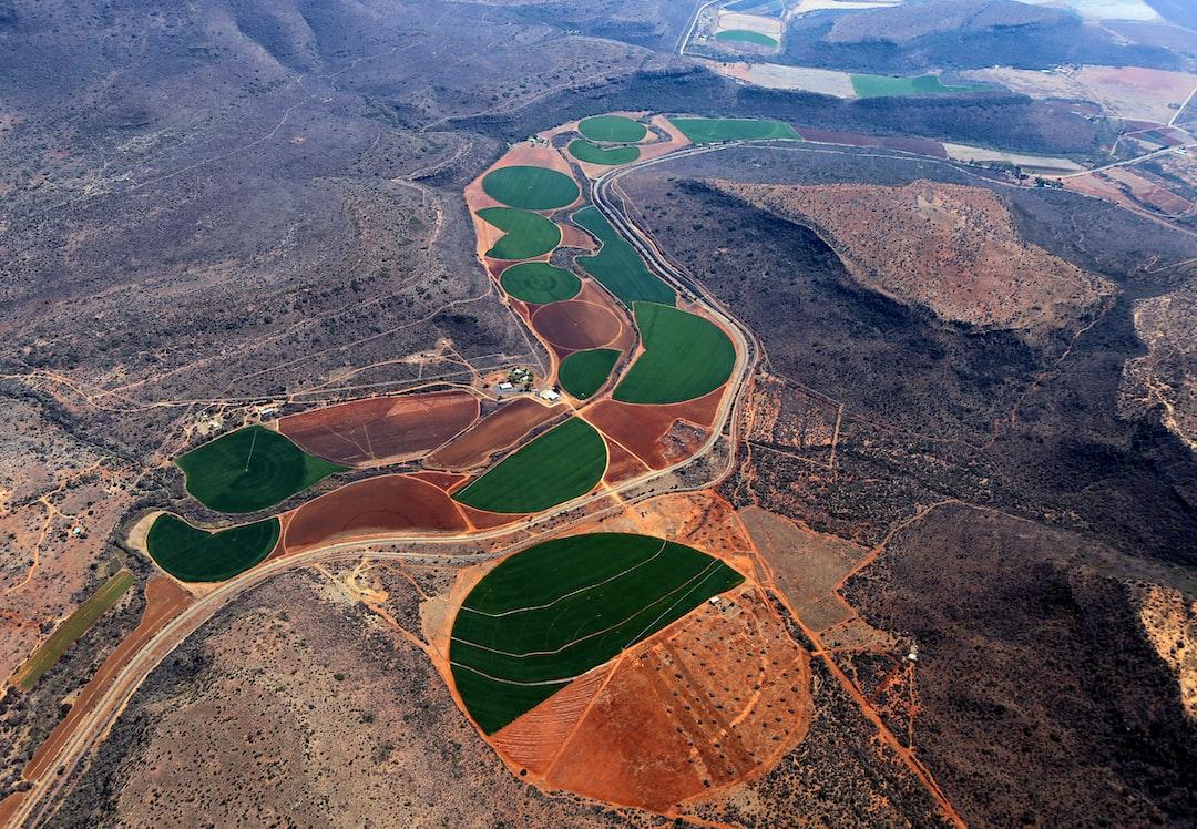Irrigated crops make an interesting mosaic.