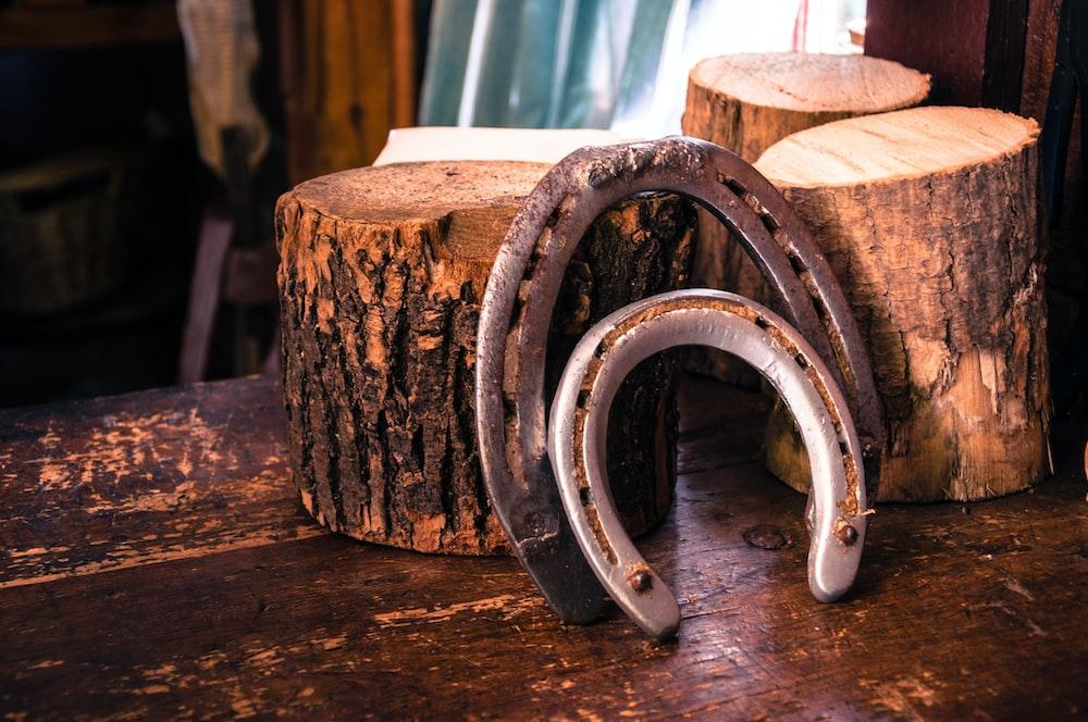 closeup photo of two gray horseshoes