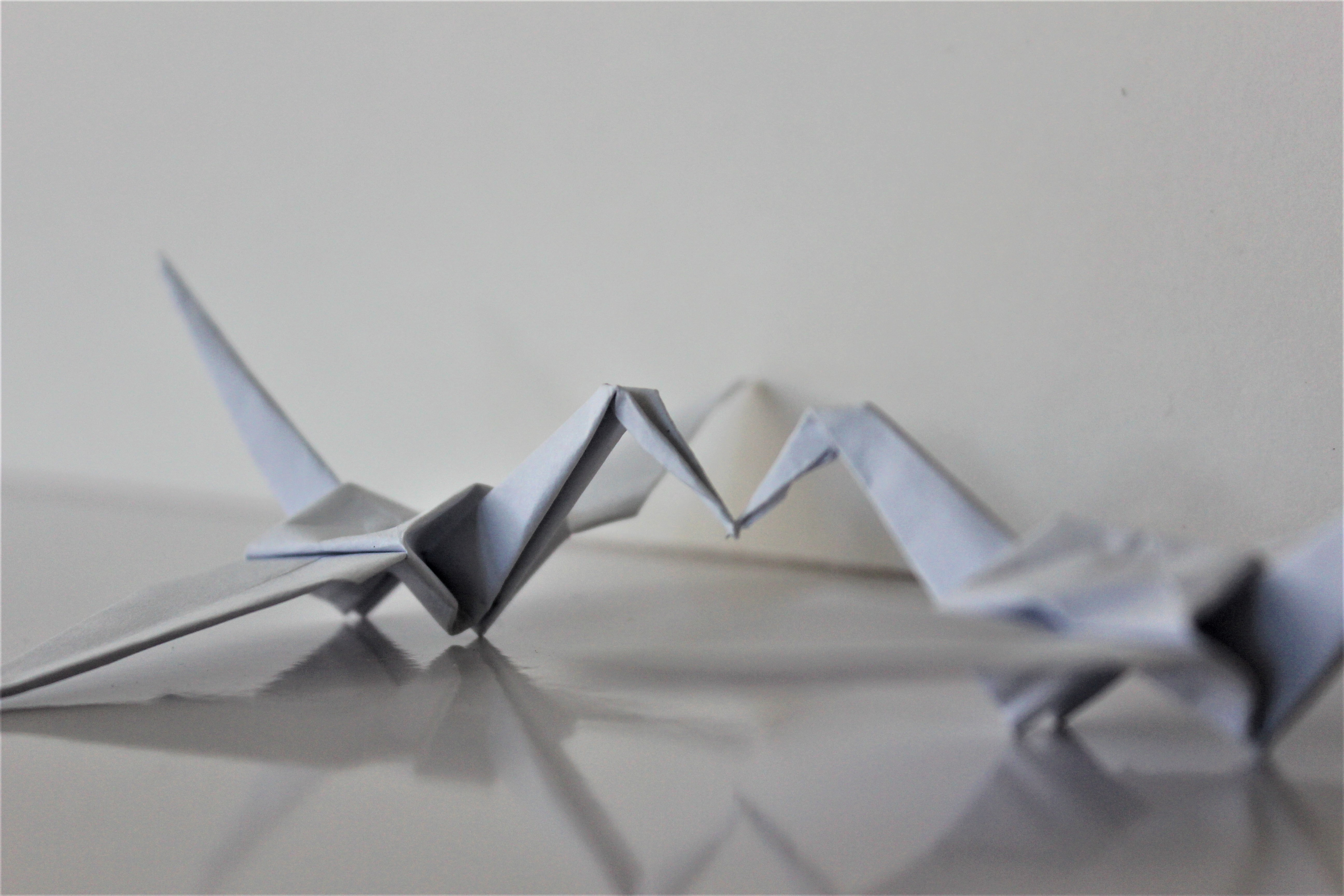 two origami swans