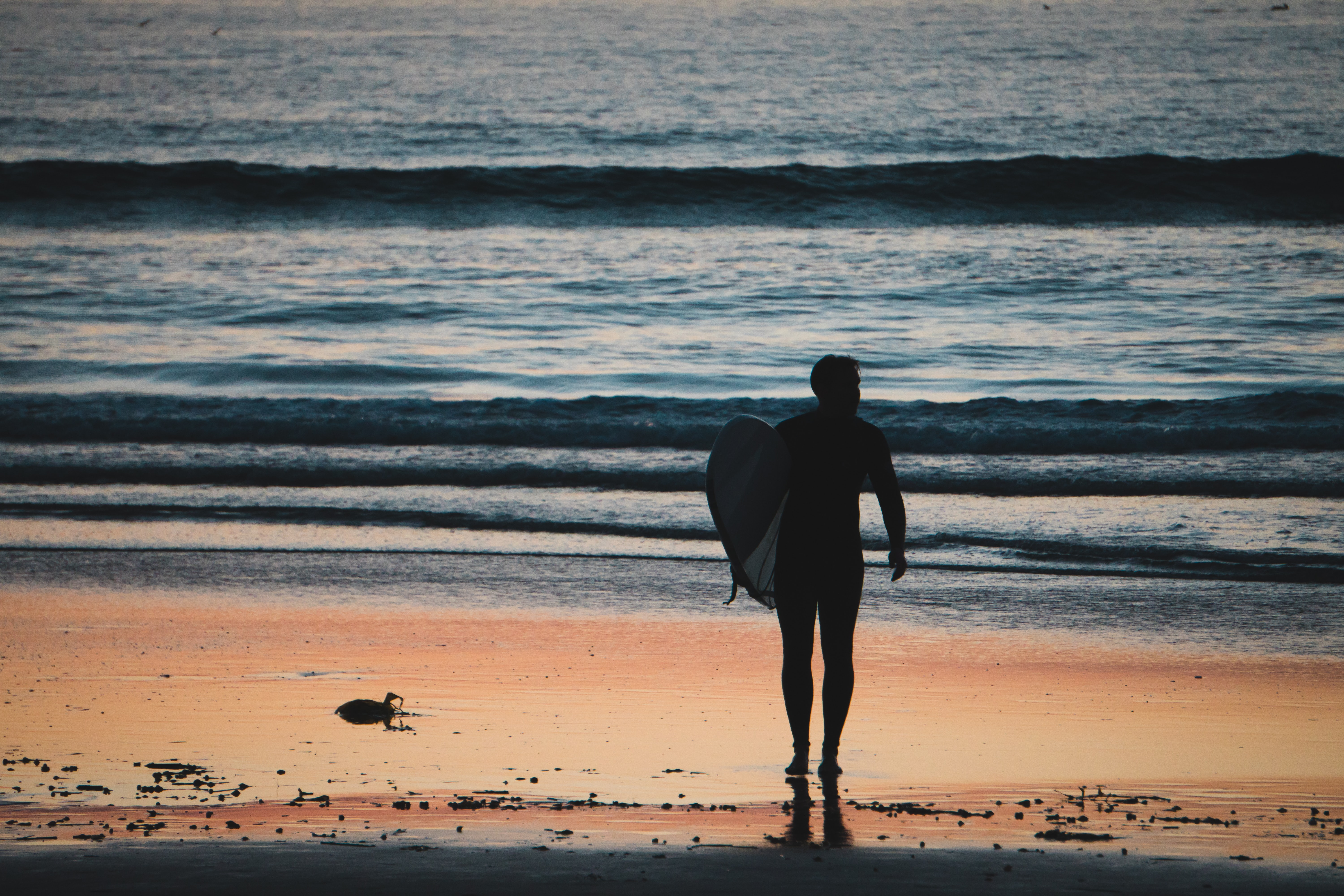 silhouette of man holding surfboard walking near shoreline