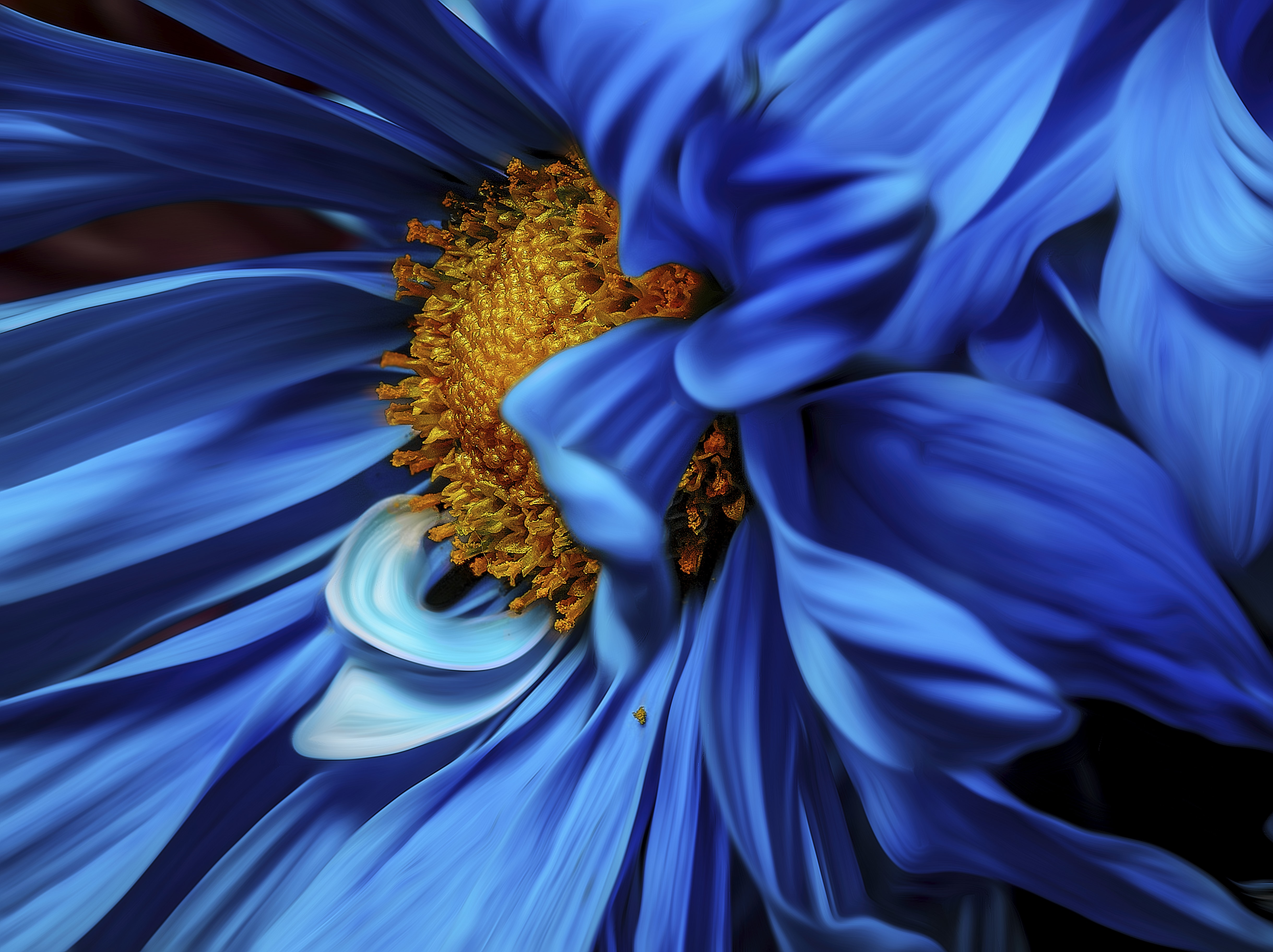 blue flower with yellow pollen