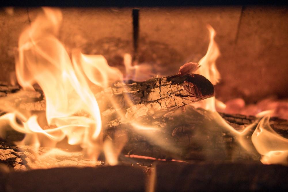focus photography of wood burning