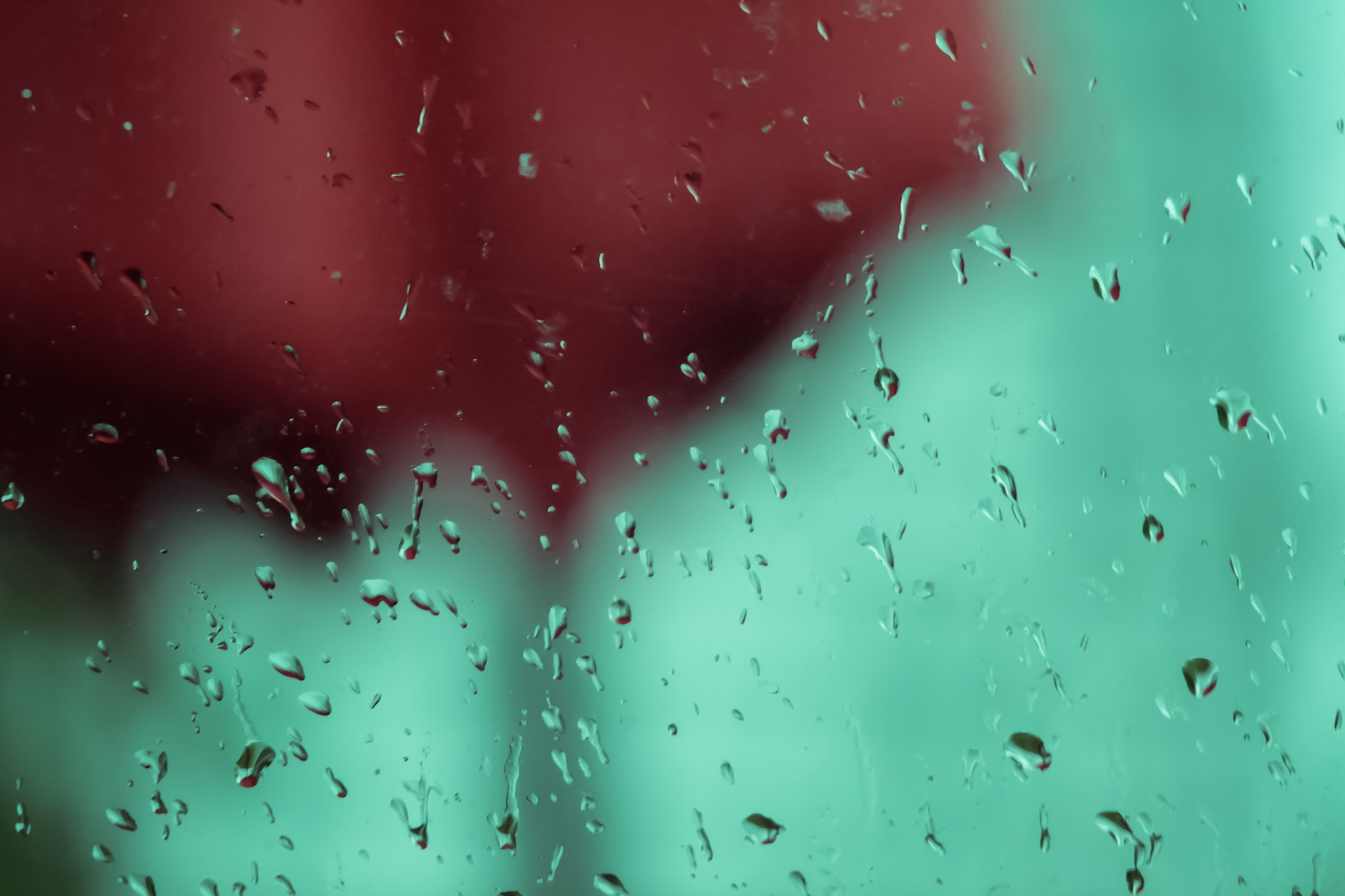 shallow focus photography of water droplets