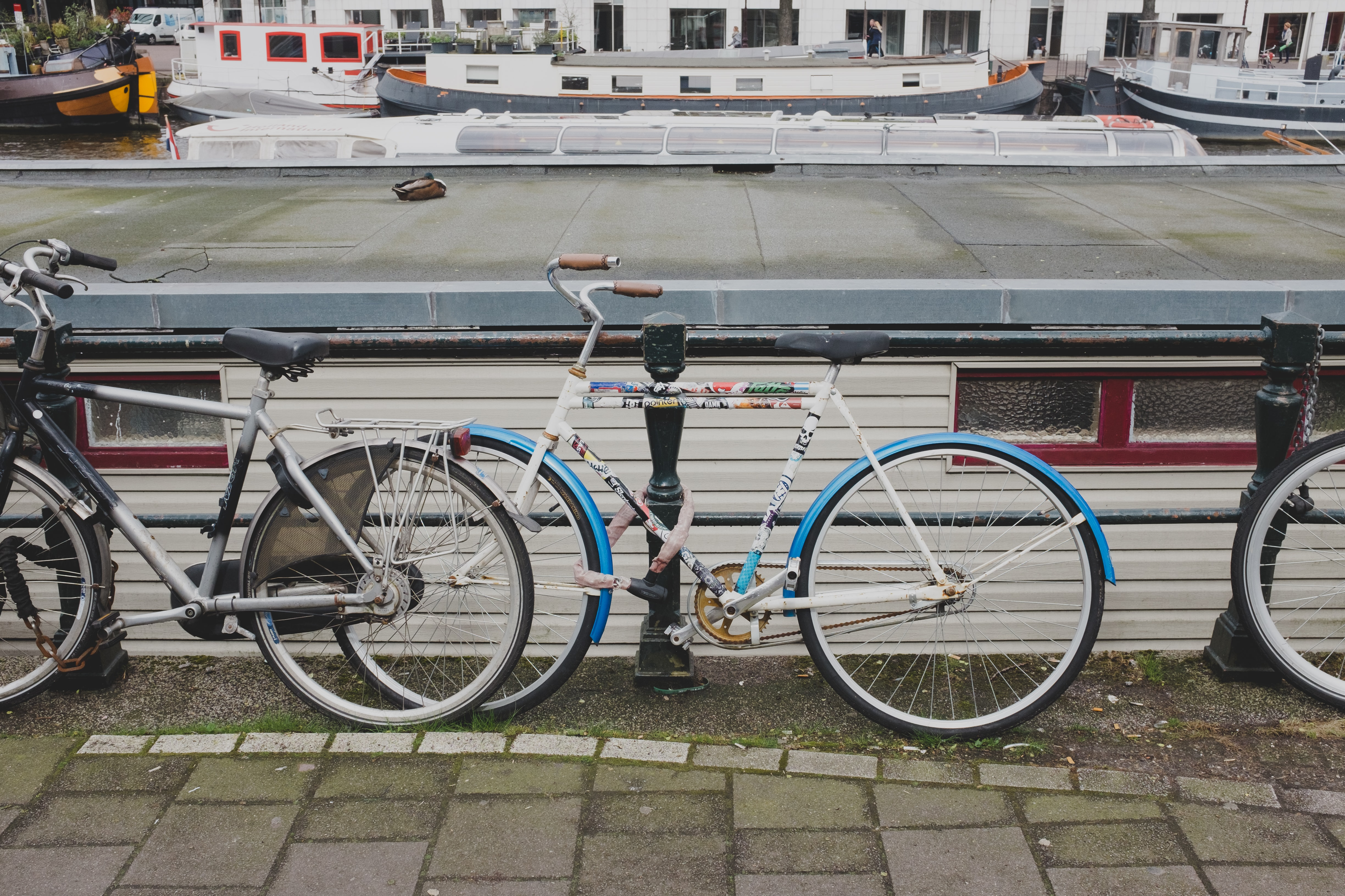 white and blue city bicycle leaning on black steel fence