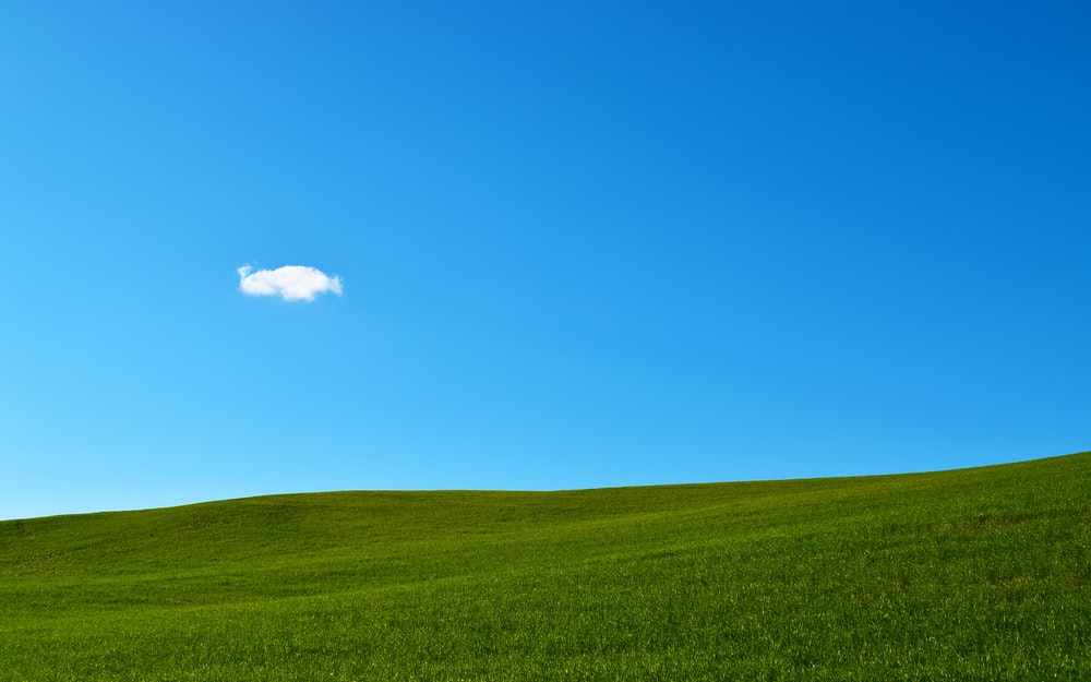 green grass field under blue sky - Best 20+ Blue Sky Pictures Download Free Images On Unsplash