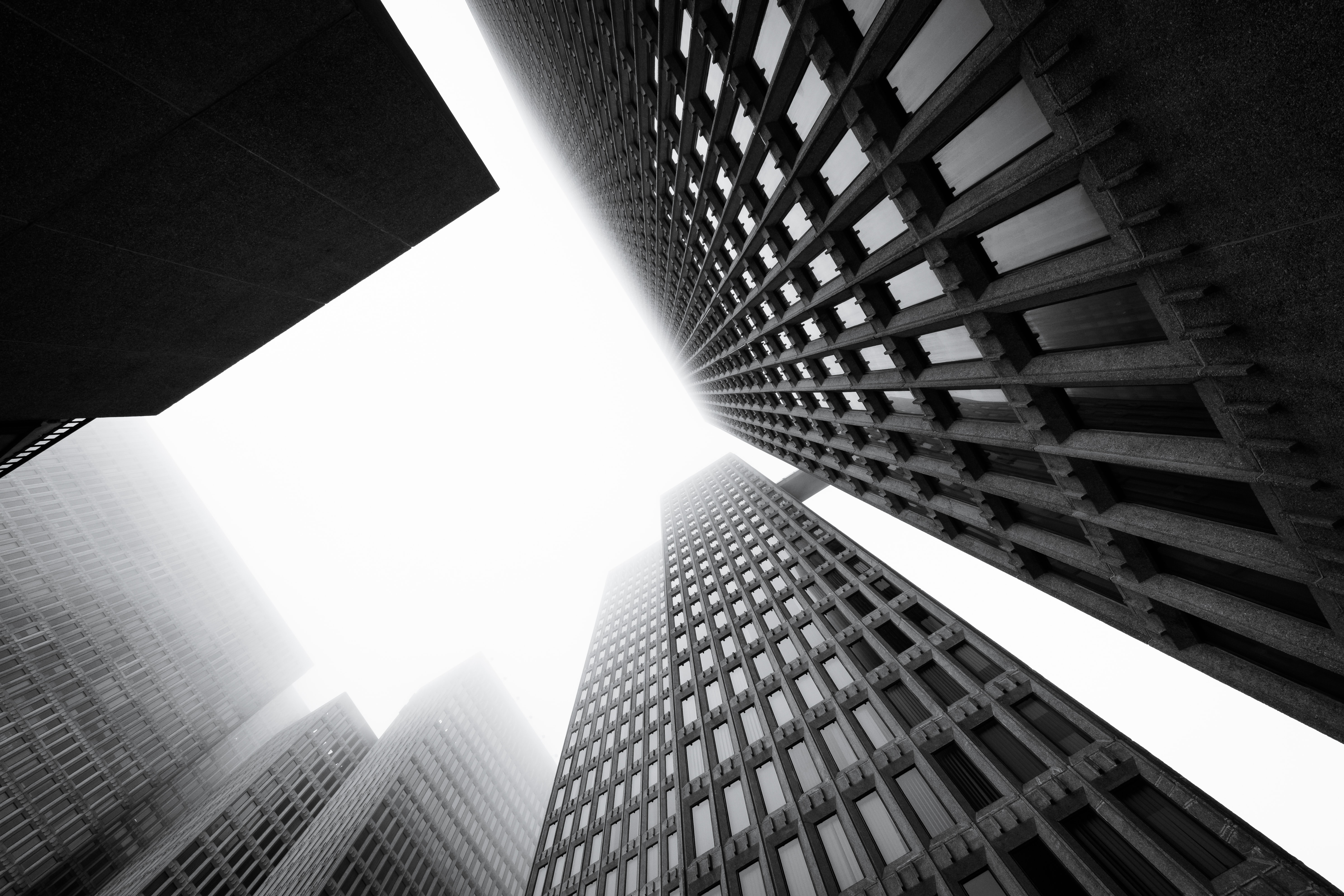 worm's-eye view photography of buildings