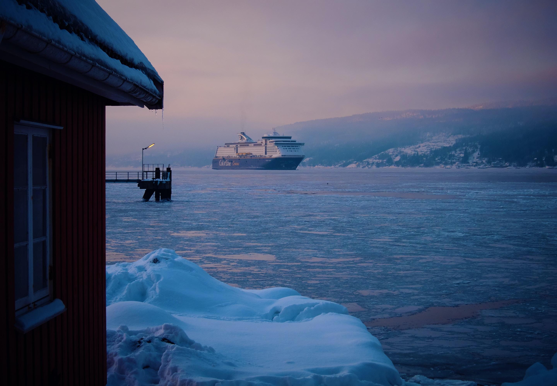 #IceBreakerChallenge-                        Poet_tani poet_tani stories