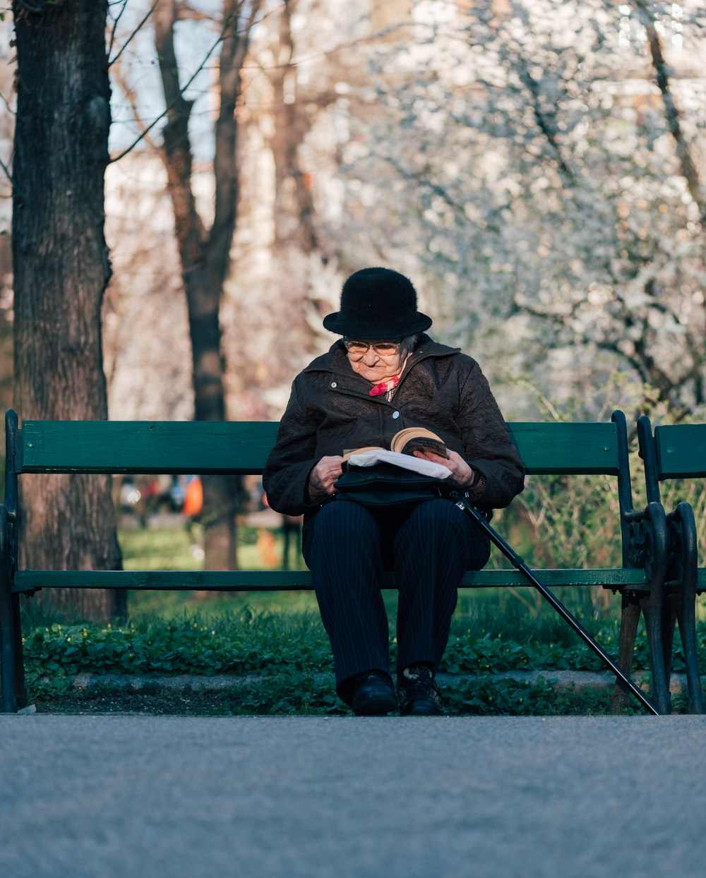 person sits on bench reading book in front of tree at daytime