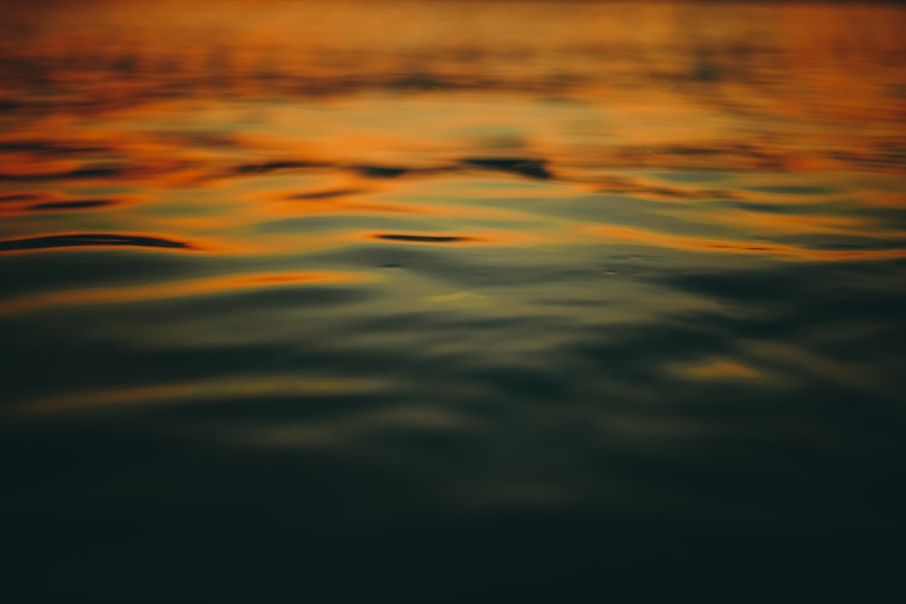 body of water macro photography