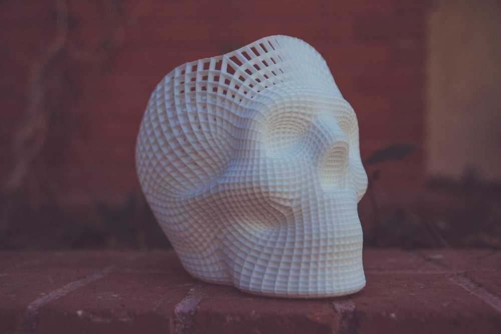 white human skull 3D artwork